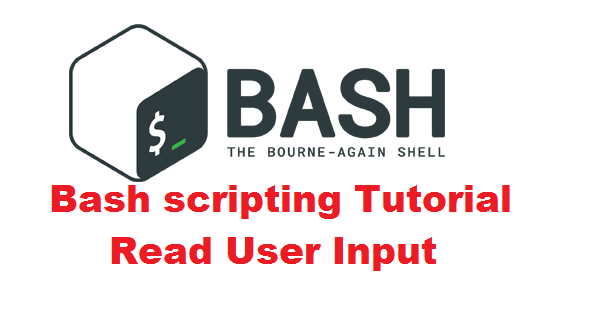Bash scripting Tutorial - Read User Input
