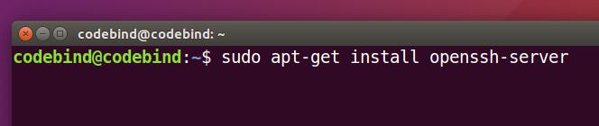 sudo apt-get install openssh-server