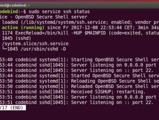 sudo service ssh status